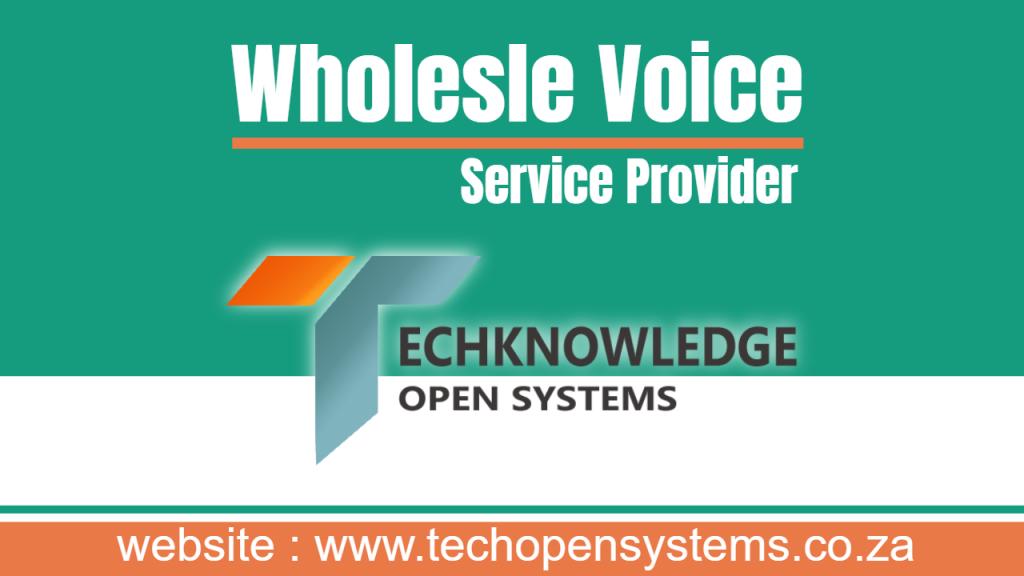 Wholesale voice